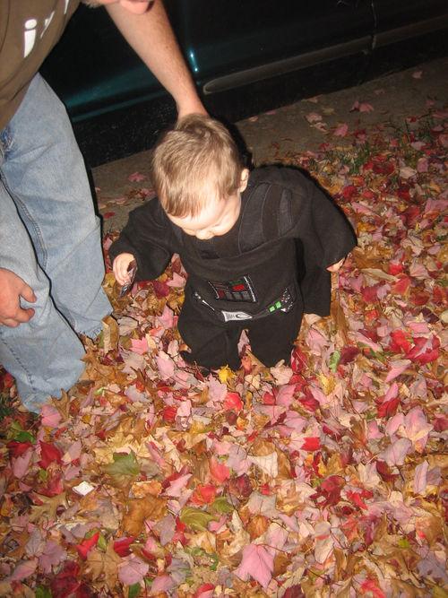 Halloween2008Leaves