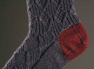 100411_socks3_LEN