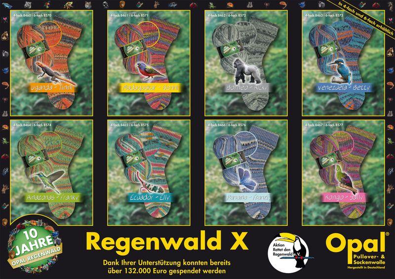 Regenwald X