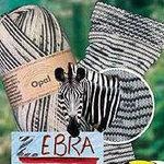 Zebra_2_1